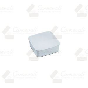 Caja fina de plástico